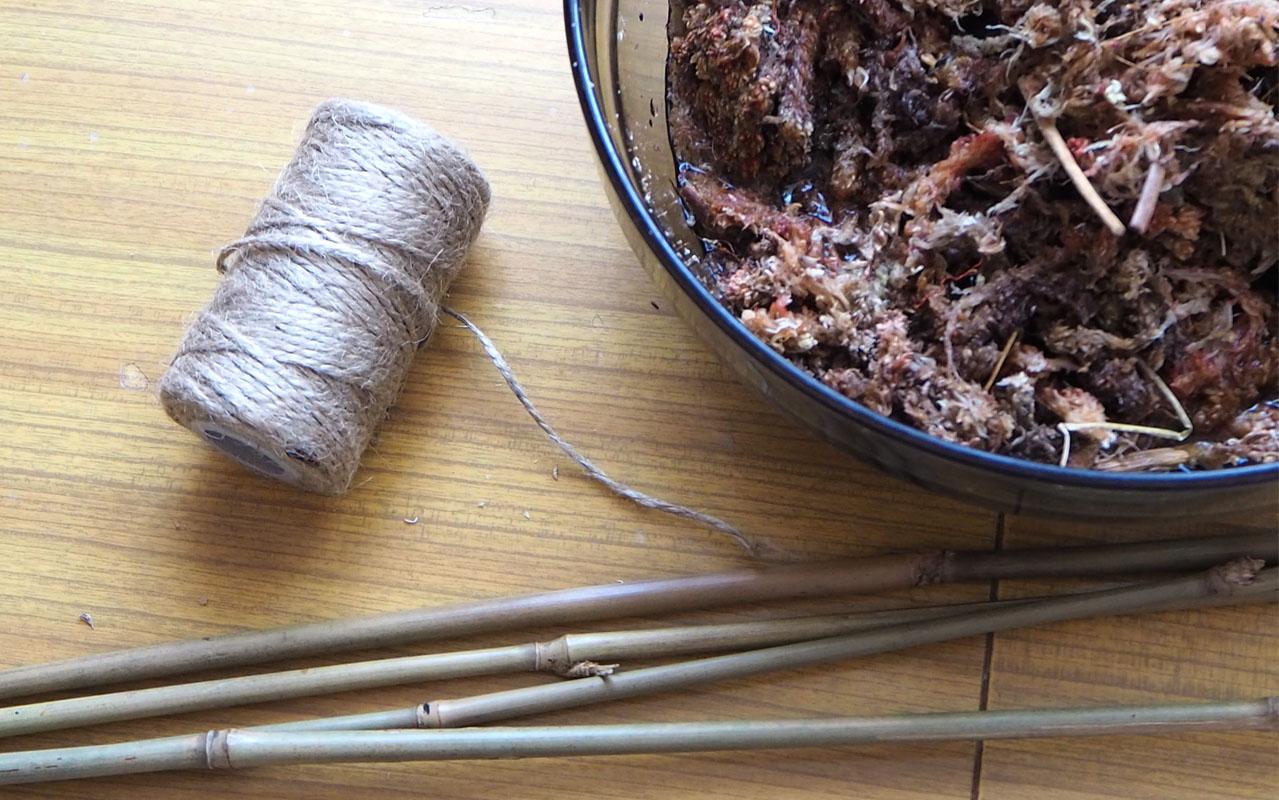 Palik z mchu do pnących roślin - DIY